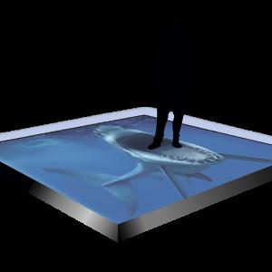 Ekran LED-Podłoga